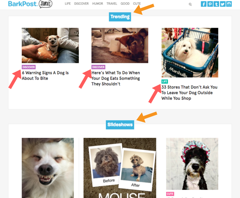 Blog-button-color-grouping-BarkPost-example
