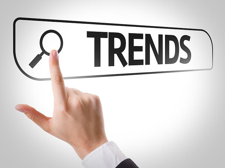 """SEO for beginners 